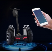 China EcoRider Non Road Vehicle Electric Chariot, Two Wheels Self Balancing Electric Scooter factory