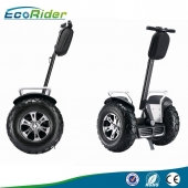 China EcoRider Off Road Golf Segway, Self Balancing Electric Scooter-Fabrik