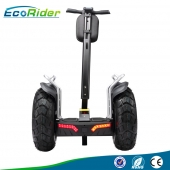 China Ecorider 72V 1266Wh battery power electric chariot 4000W segway E8-2 factory