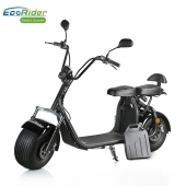 China Ecorider City road 2 wheel big tire harley electric scooter motorcycle with brushless motor 1500w factory
