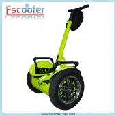 China Fashion Look New City Modell Elektro Surrey Bike Segway PT Stil ESIII L2 72v-Fabrik