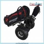 China Golf Version Self Balancing Scooter,Mopeds for sale,ELectric Motorbikes factory