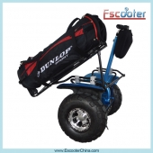 China Golf Version Standing Electric Scooter,Electric 2 wheel Scooter,Self Balancing Scooter for Sale factory