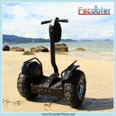 China High Green Battery Powered 2 Wheel Electric Standing Scooter Stand up Scooter for Off Road factory