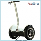 Κίνα εργοστάσιο Hot Electric Balance Scooter,Electric Chariot,Self-Balancing Scooter Model ESIII