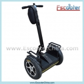 China New Arrival Model Lithium Battery Escooter ESIII-L1,City Road Style 2 Wheel Self Balance Electric Scooter factory