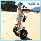 Press Type Fuse 2 Wheel Self Balancing Scooter,Personal Transporters Model ESOI