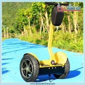 China Segway Self-Balancing Chariot Elétrica Pessoal Transporter Scooter (ESIII) fábrica