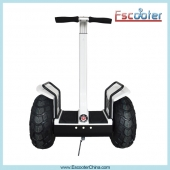 China Smart Balance Electric Scooter,Rechargeable Battery Powered Scooter ,Big Wheel Scooter ESOI-Fabrik