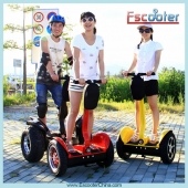 China Two-Wheeled Transporters,Balancing Scooter ESIII factory