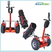 China Two Wheels Balancing Scooter Golf Cart Mobility Scooter factory