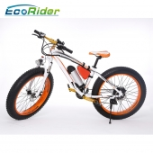 China high speed dirt electric bikes off road outdoor electric snowmobile bicycle for adults with high quality factory