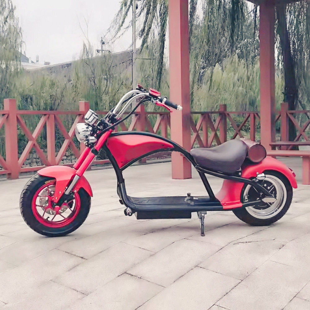 Two Wheels Design 2017: EcoRider 2019 New Design 2 Wheels Electric Scooter Adult