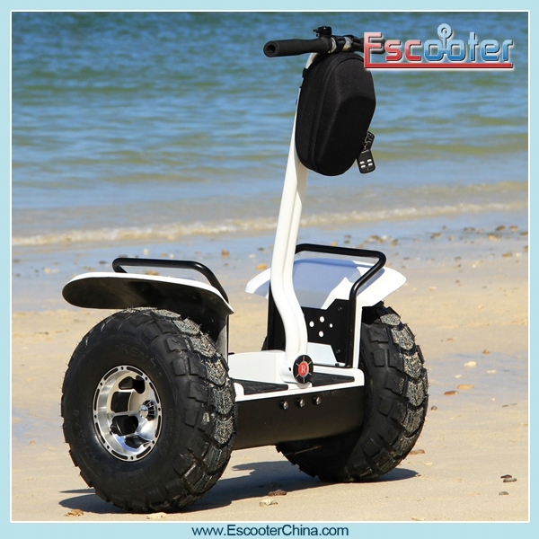 Personal Transporter Style Two Wheel Stand Up Electric