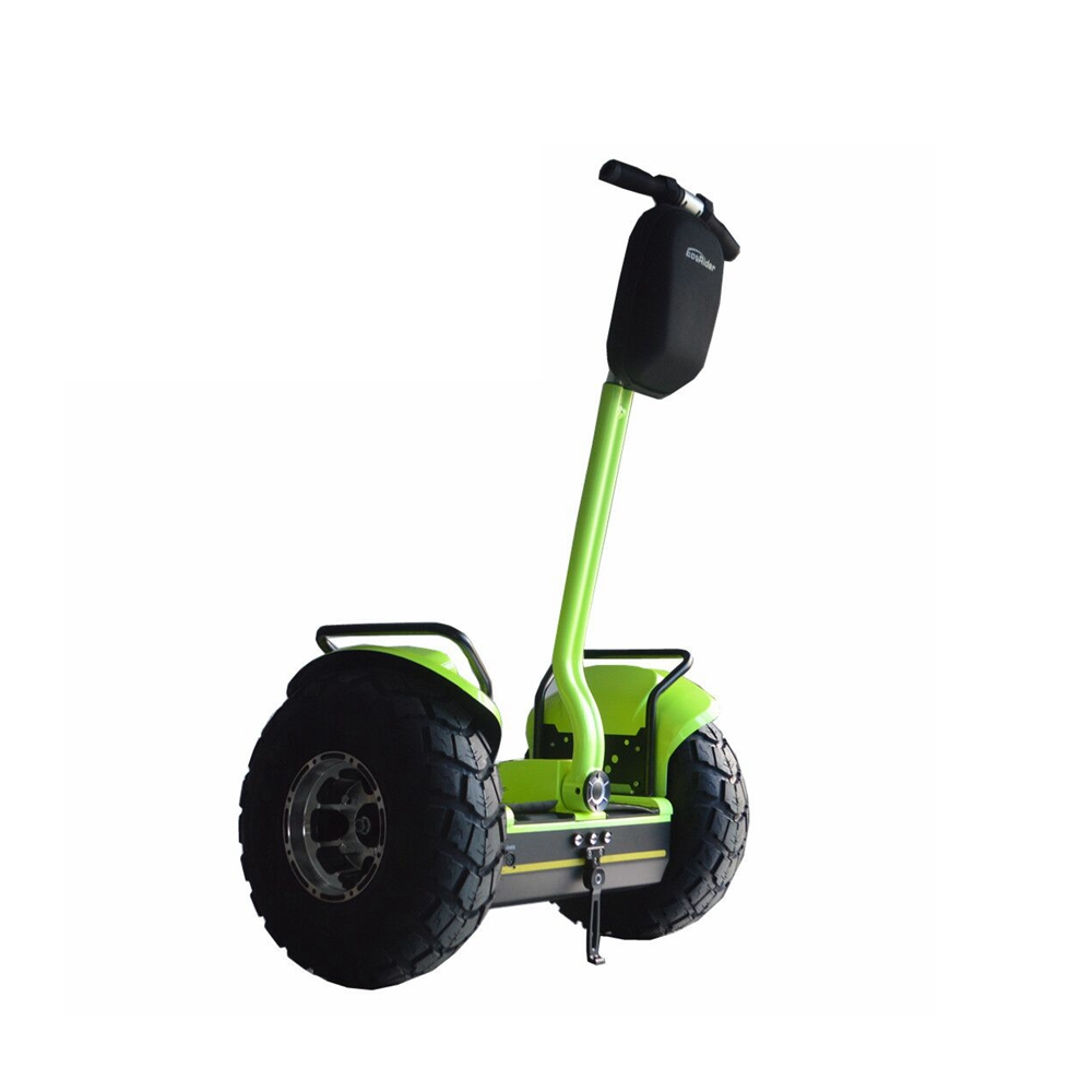 Self Balancing Electric Scooter 19inch Segway Scooter